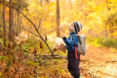 Happy child in a beautiful autumn forest.