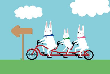 lapin: les lapins et un vélo tandem
