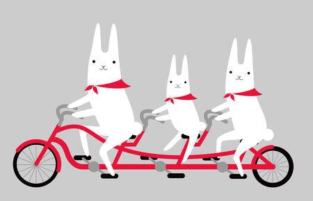 rabbits and cycling  Vector