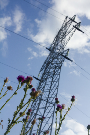 Field weeds and supports of the high-voltage line of wires Stock Photo