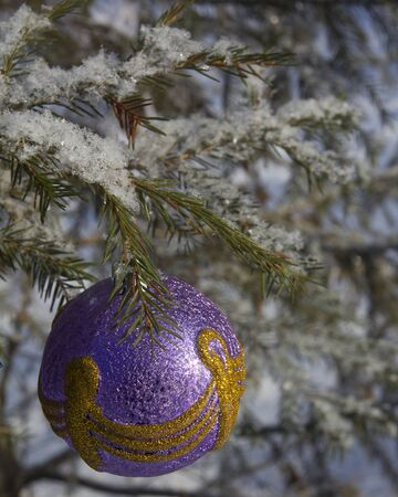New Years toy on the branch of fir-tree covered with snow in the winter forest Stock Photo