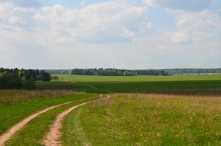 demarcation: Fields near the garden in the morning Russia