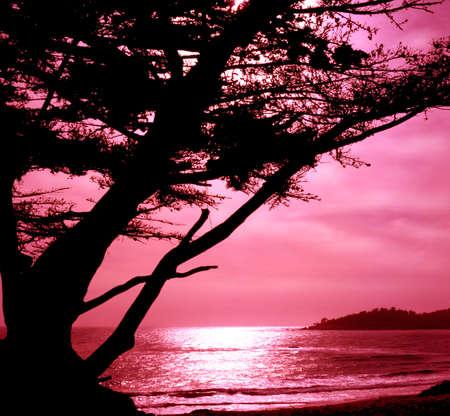 carmel: Versi�n rosa filtrada de una Salida de la luna hermosa Carmel Foto de archivo