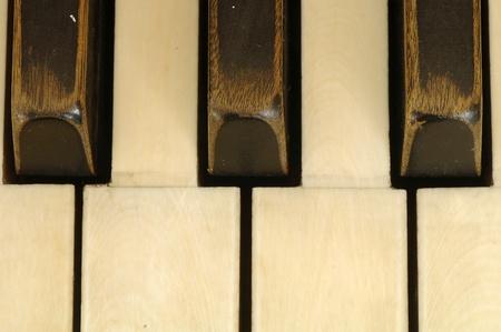 Keys of very old piano photo