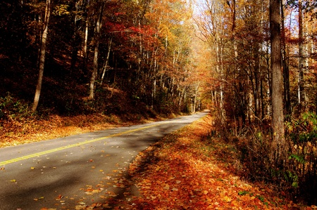 america countryside: Nice Image of a country road in the smokey mountains