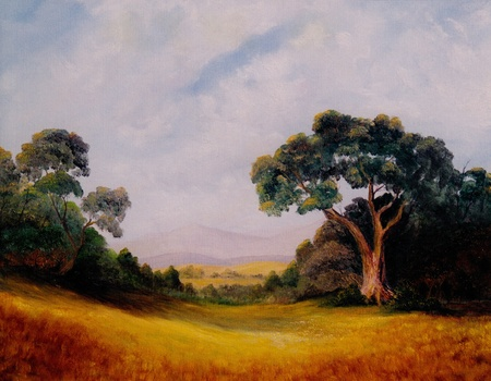 Very Nice Original Landscape oil painting On canvas photo