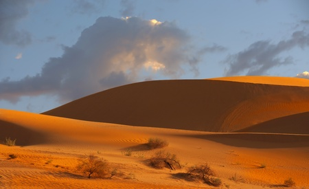 Beautiful Image of The Imperial Sand Dunes photo