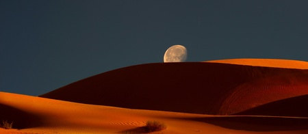 Very Nice Panoramic Image of The moonrise Over the Dunes