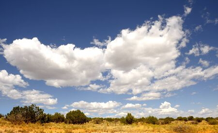 Beautiful image of a Typical Scene In New mexico Stock Photo - 11089412