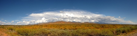 Very Nice Panoramic Image Of The new mexico landscape