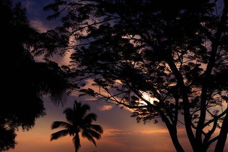 Bella immagine di un tramonto tipica hawaiana Archivio Fotografico - 12921019