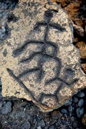 Amazing 1700 year old Ancient Hawaiian petroglyphs done in lava from The big Island Stock Photo