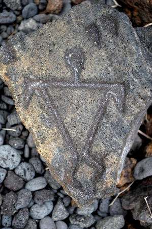 wall paintings: Amazing 1700 year old Ancient Hawaiian petroglyphs done in lava from The big Island Stock Photo