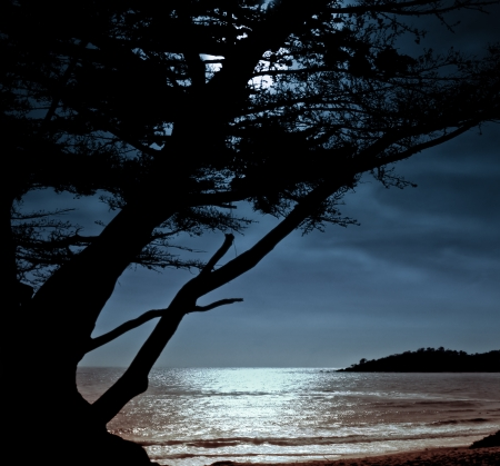 Beautiful Image Of a moonrise set in Carmel, California