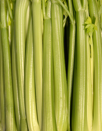 Nice closeup of three bunches of celery Banque d'images