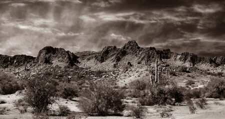 Nice Monochrome Image of the desert in southern New Mexico next to the border. photo