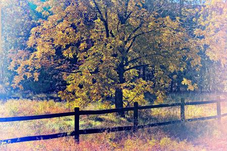 countryside landscape: Classic Countryside Landscape scene of Sedona Arizona