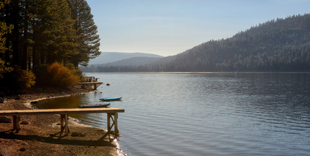 ponderosa pine: Beautiful Image Of Donner lake shoreline, late summer.