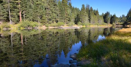 ponderosa pine: Nice Image Of the truckee River that Feeds lake Tahoe