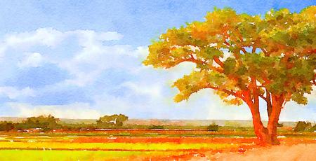 Nice original painting Of mexico Frmland