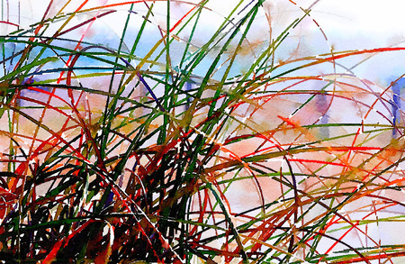 tall grass: Nice painting of Tall Grass at the seaside