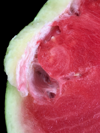 A very Bad Rotting Watermelon straight from the store