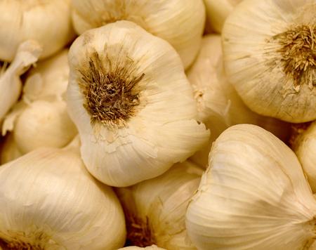 The perfect closeup Image Of Fresh Garlic