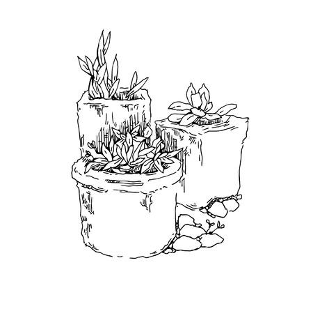 tuinontwerp: Tuinontwerp elementen vector schets. Bewerkbare lagen. Stock Illustratie