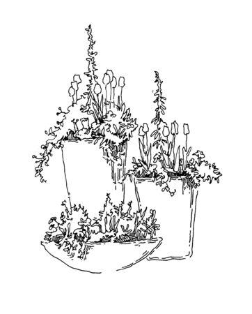 garden design: Giardino elementi di design vettore schizzo. Layer modificabili.