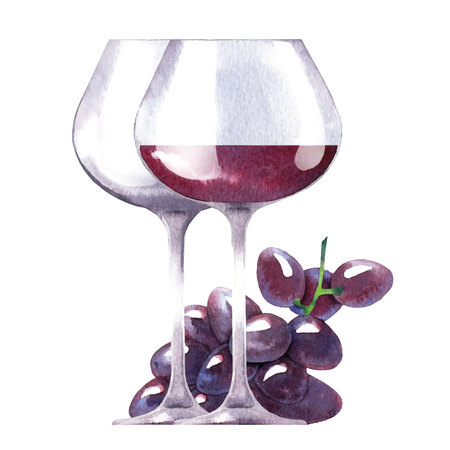 wine bottles: Watercolor sketch of wine and grapes. Vector illustration. Illustration