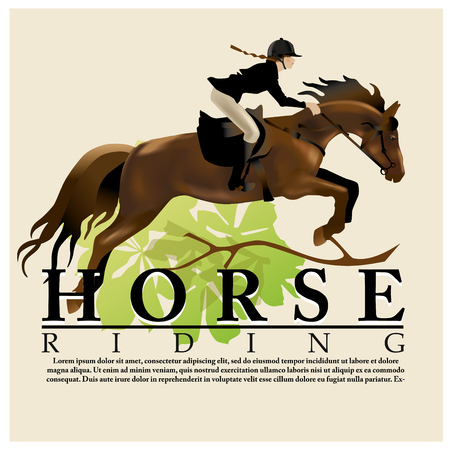 horseman: Horse and Rider realistic illustration. Isolated on white background.