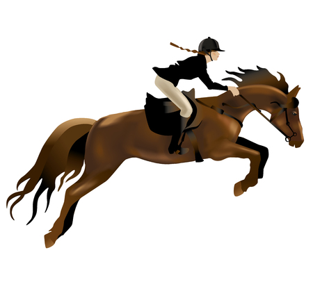 show jumping: Horse and Rider realistic illustration. Isolated on white background.