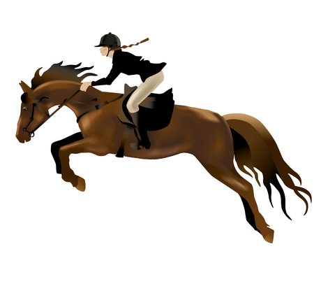 purebred: Horse and Rider realistic illustration. Isolated on white background.