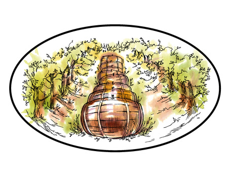 cypress: Hand made sketch grape fields and vineyards. Made in vintage style.