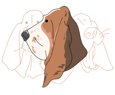 A Vector illustration funny dog thorough bred on a white background.