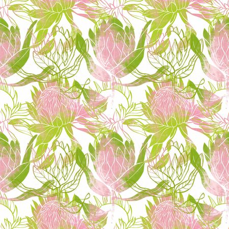 Pink and green flower pattern. Protea flower. Hand drawn illustration. Fullsize raster artwork. 免版税图像