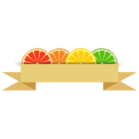 Four bright citrus slices of grapefruit, orange, lemon and lime with white blank banner in paper style Vector