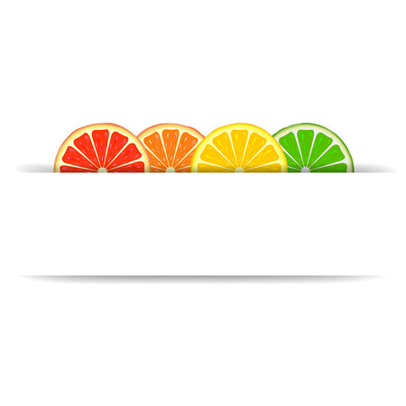 Four bright citrus slices of grapefruit, orange, lemon and lime with white blank paper banner Vector