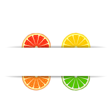 Four bright citrus slices of grapefruit, orange, lemon and lime with white paper banner Vector