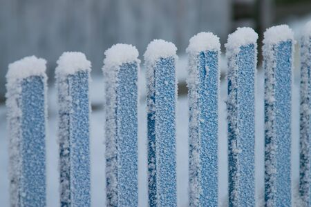 poling: Close-up shot of blue wooden fence covered with fluffy snow. Frost and winter