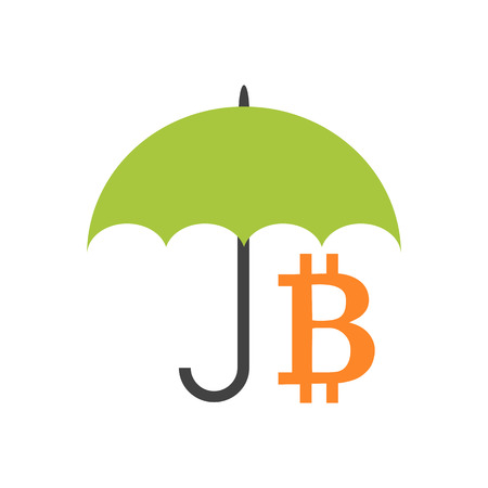 Flat style icon of keeping bitcoin safe