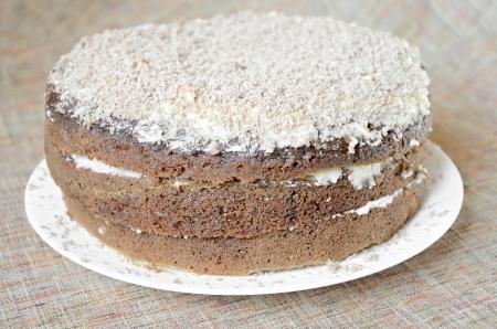 Closeup of tasty chocolate cake