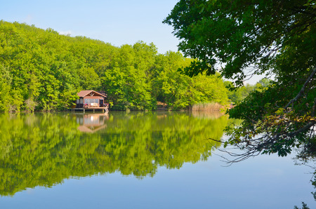 Beautiful view on lake in summer in Crimea photo
