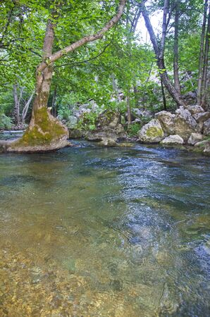 flowing river: Flowing River in canion in autumn in Crimea