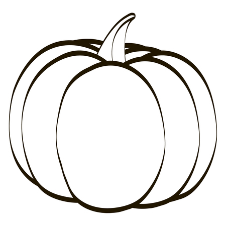 solated on white: Pumpkin icontour solated on the white background