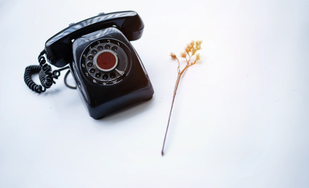The antique telephone put beside dried flower on white table,black color telephone,vintage style,warm light tone,blurry light around.