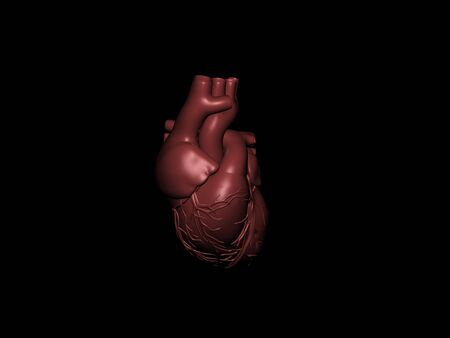3D model of a heart on a black background Stock Photo - 11240505