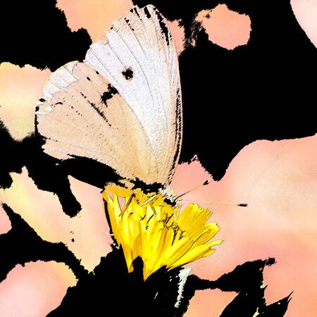 butterfly on flower-sumi e