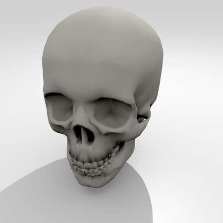 3d human skull on white background Stock Photo - 13802124