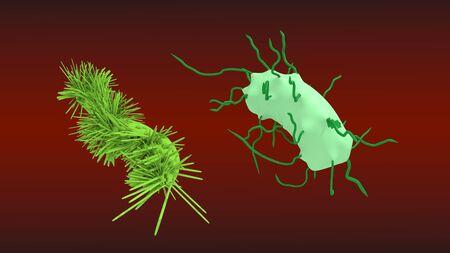 bacteriums